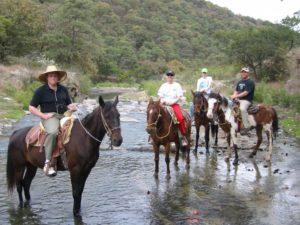 rio caliente horses